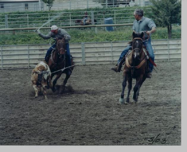 Wade King & Warren Walter roping 2003